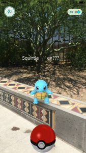 Blue Squirtle sitting on wall outside library