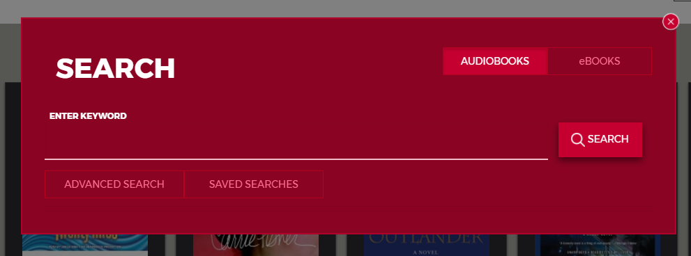 Screenshot of RBdigital search box