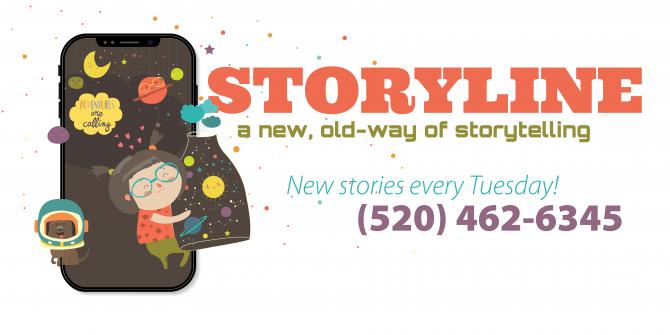 Storyline logo - rectangle